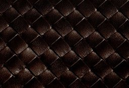Bottega Veneta Visual