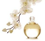 Parfum Flakon mit Blüte